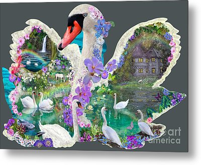 Swan Day Dream Metal Print by Alixandra Mullins