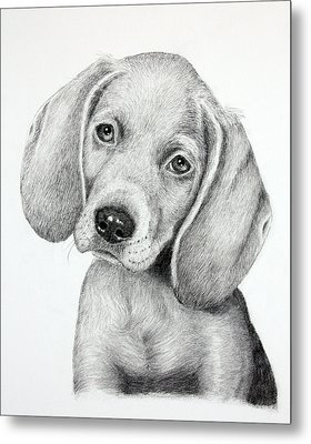 Sweet Puppy Love Metal Print by Lorraine Foster