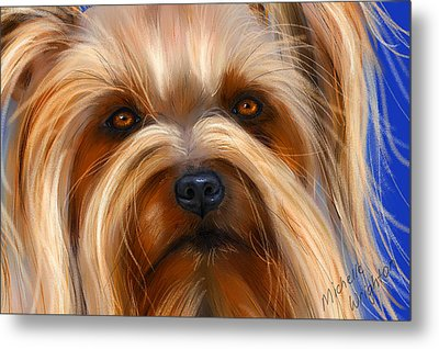 Sweet Silky Terrier Portrait Metal Print by Michelle Wrighton