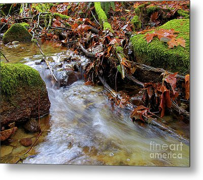 Swept Away Metal Print by Sharon Talson