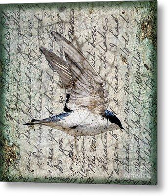 Swift Wings Metal Print by Judy Wood