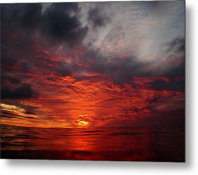 Swimmers Sunset Metal Print by Tony Reddington