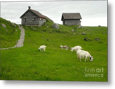 Switzerland Metal Print by Gregory Dyer