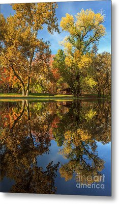 Sycamore Pool Reflections Metal Print by James Eddy