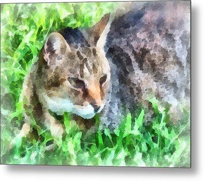 Tabby Cat Closeup Metal Print by Susan Savad