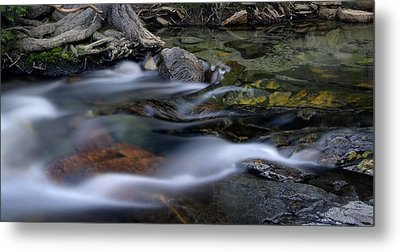 Tahoe Eagle River Metal Print by Dave Dilli