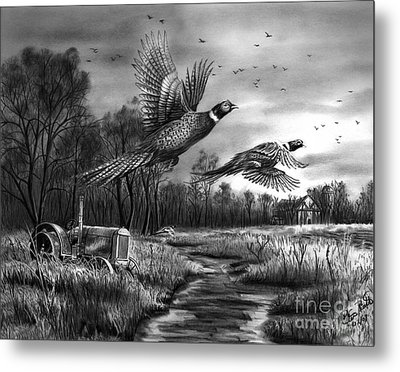 Taking Flight  Metal Print by Peter Piatt