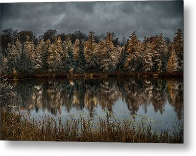 Tamarack Reflections Metal Print by Paul Freidlund
