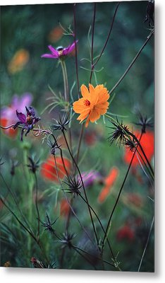 Tangles - A Dance Of Flowers And Weeds Metal Print by Michael Flood