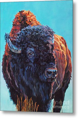 TED Metal Print by Patricia A Griffin