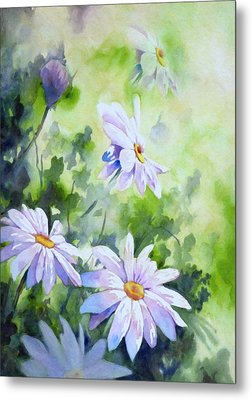 Tender Daisies Metal Print by Georgiana Romanovna