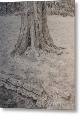 Tennessee Tree And Rock Wall Metal Print by Arthur Witulski