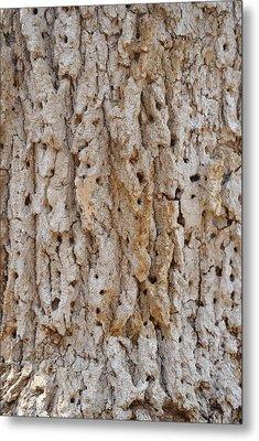 Termite Design Metal Print by Malissa Hamner