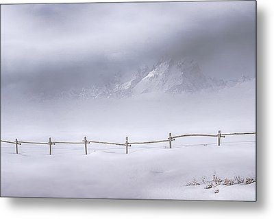 Teton Morning Metal Print by Priscilla Burgers
