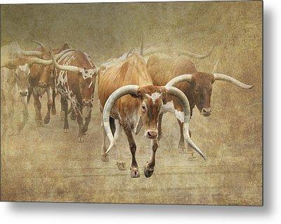 Texas Longhorns 2 Metal Print by Angie Vogel