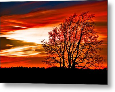Texas Sunset Metal Print by Darryl Dalton