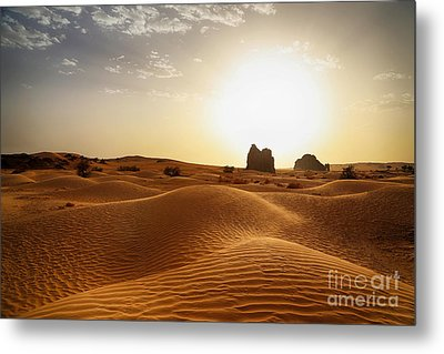 The Algerian Sahara Metal Print by Omar Dakhane