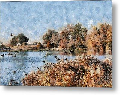 The Birds Of White Rock Lake Metal Print by Lorri Crossno
