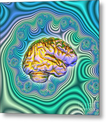 The Brain Metal Print by Dennis D. Potokar