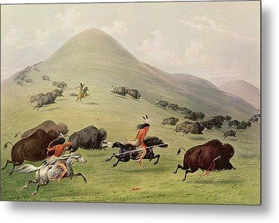 The Buffalo Hunt Metal Print by George Catlin
