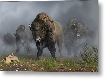 The Buffalo Vanguard Metal Print by Daniel Eskridge
