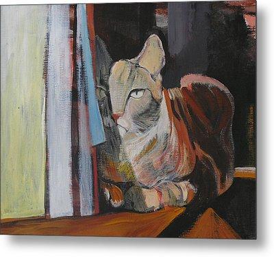 The Cat Metal Print by Alicja Coe