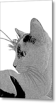The Cat Metal Print by Ben and Raisa Gertsberg