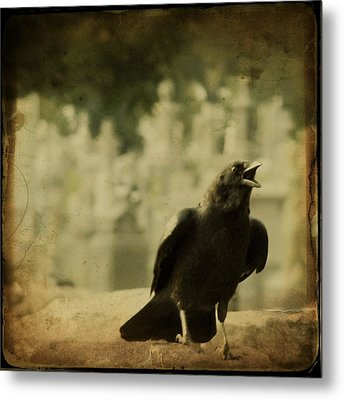The Caw Metal Print by Gothicrow Images