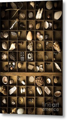 The Collection Metal Print by Edward Fielding