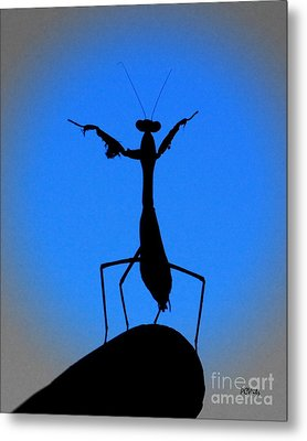 The Conductor Metal Print by Patrick Witz