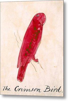 The Crimson Bird Metal Print by Edward Lear