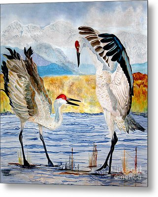 The Dance - Sandhill Cranes Metal Print by Anderson R Moore