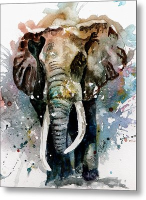 The Elephant Metal Print by Steven Ponsford