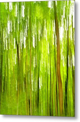 The Emerald Forest Metal Print by Bill Gallagher