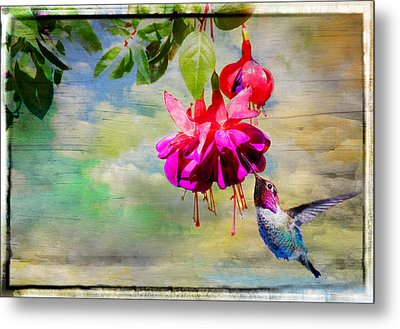 The Face Of Fuchsia Metal Print by Lynn Bauer
