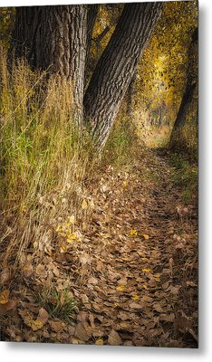 The Fall Way Home Metal Print by Michael Van Beber