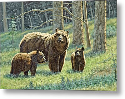 The Family - Black Bears Metal Print by Paul Krapf