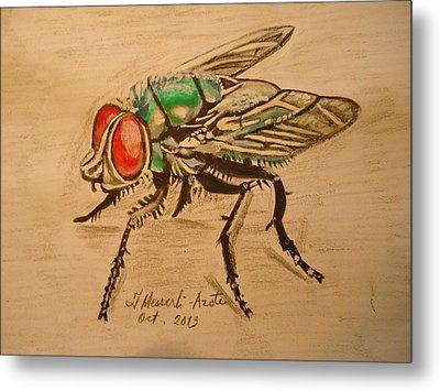 The Fly Metal Print by Fladelita Messerli-