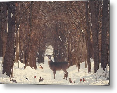 The Forest Of Snow White Metal Print by Carrie Ann Grippo-Pike