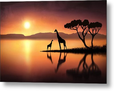 The Giraffes At Sunset Metal Print by Jennifer Woodward