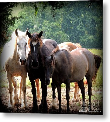 The Girls Metal Print by Rabiah Seminole