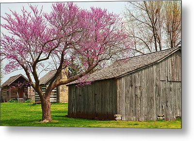 The Gray Campbell Farmstead Metal Print by Lena Wilhite