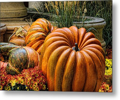 The Great Pumpkin Metal Print by Tammy Espino