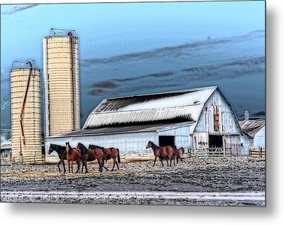 The Horse Barn Metal Print by Cheryl Cencich