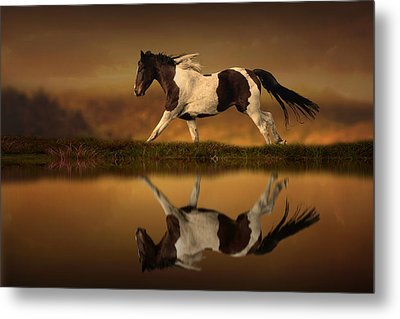 The Horse's Journey Metal Print by Jennifer Woodward