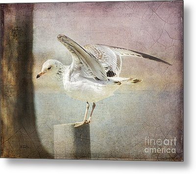 The Landing Metal Print by Betty LaRue