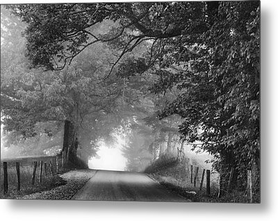 The Light Ahead Metal Print by Andrew Soundarajan