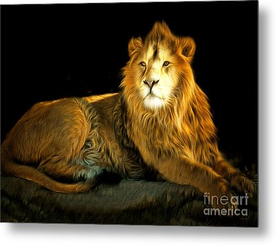 The Lion 201502113-2brun Metal Print by Wingsdomain Art and Photography