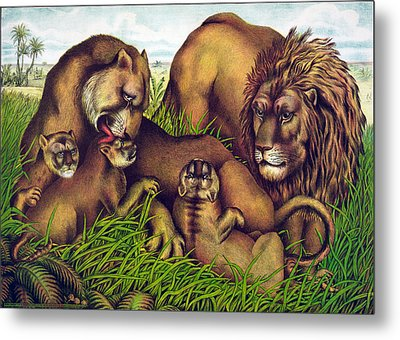 The Lion Family Metal Print by Georgia Fowler