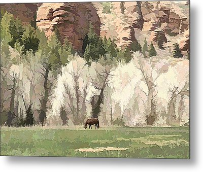 The Lone Horse Metal Print by Ely Arsha